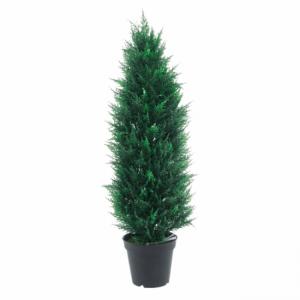 Şam ağacı