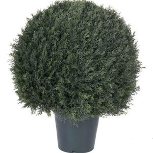 Cypress ball form topiary