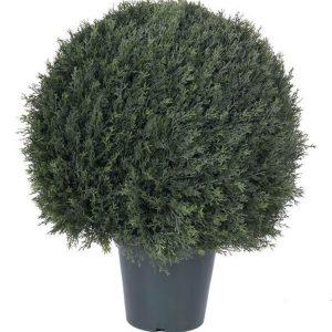 Şam ağacı dairəvi formalı